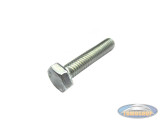 Hexagon bolt M7x25 galvanized