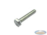 Hexagon bolt M7x35 galvanized