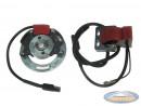 Ignition inner rotor Selettra KZ